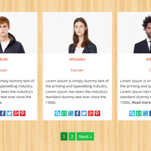 team-pagination